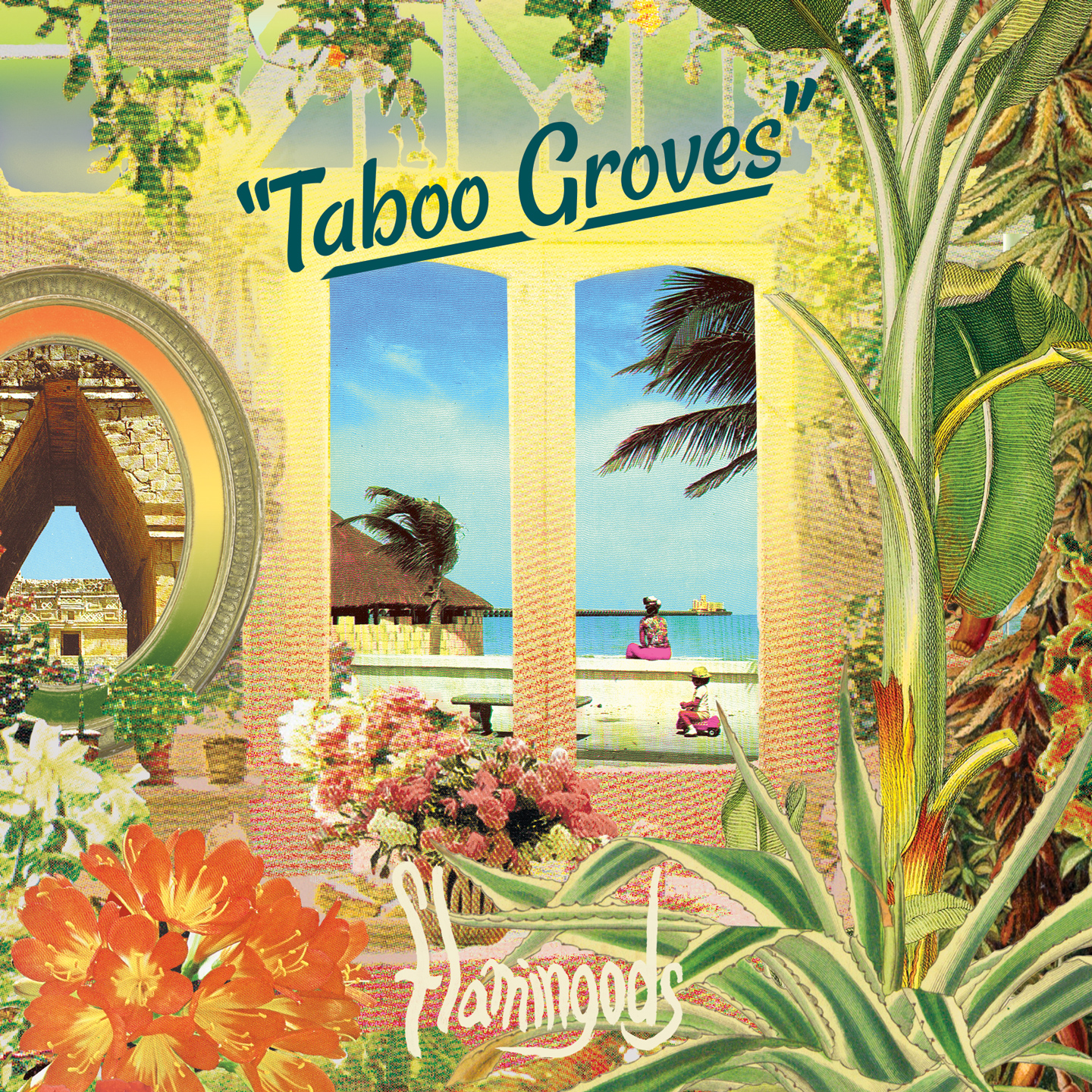 Taboo-Groves-Digital-Packshot